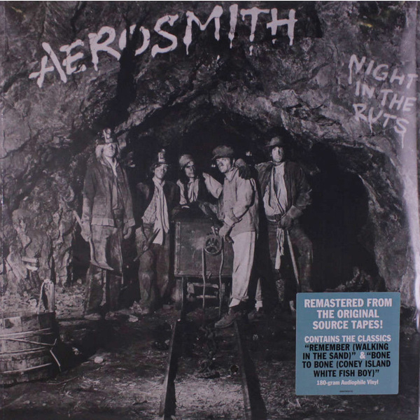 Aerosmith Aerosmith - Night In The Ruts aerosmith devil s got a new disguise – the very best of aerosmith cd