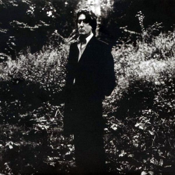 Alain Bashung Alain Bashung - L'imprudence (2 LP) alain gods