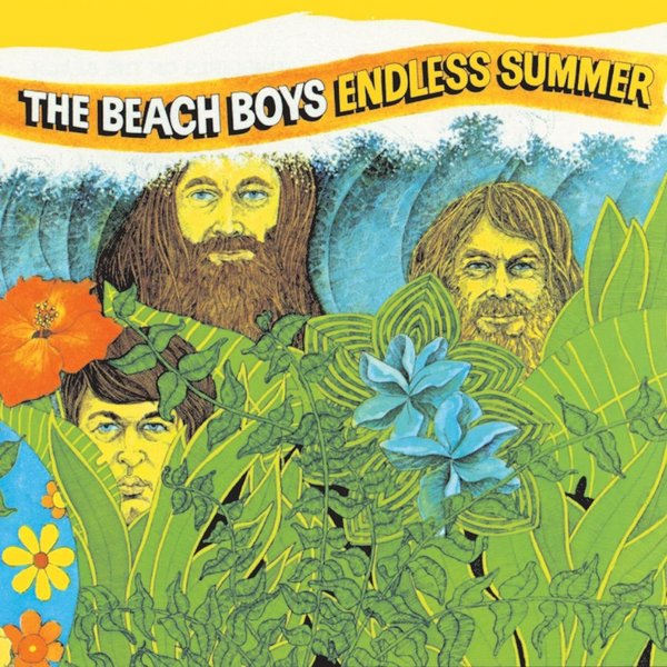 Beach Boys Beach Boys - Endless Summer (2 LP)