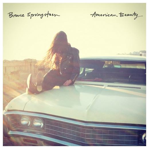 BRUCE SPRINGSTEEN BRUCE SPRINGSTEEN - AMERICAN BEAUTY