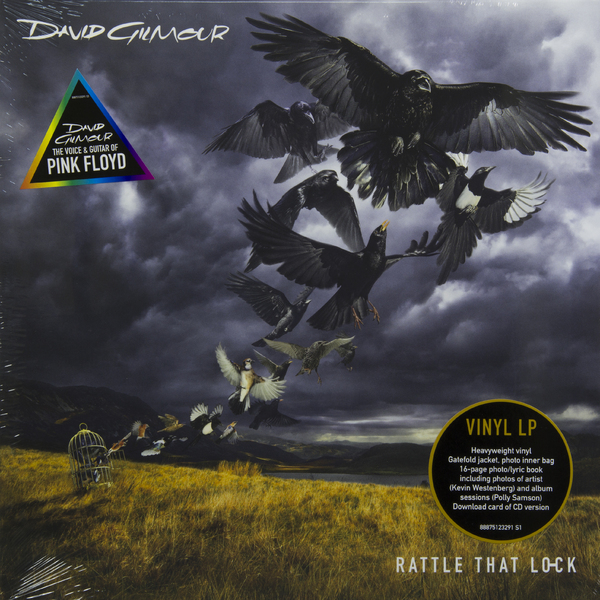 DAVID GILMOUR DAVID GILMOUR - RATTLE THAT LOCK (180 GR) david gilmour cd
