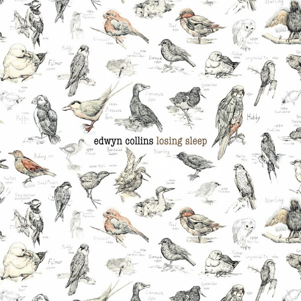 Edwyn Collins Edwyn Collins - Losing Sleep (2 LP) phil collins singles 4 lp