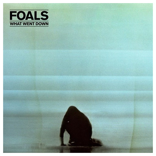FOALS FOALS - WHAT WENT DOWN  изображение