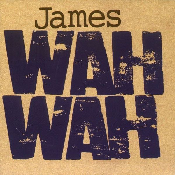 JAMES JAMES - Wah Wah (2 LP) james chellis mcsa