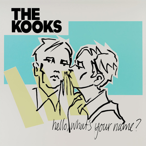 THE KOOKS THE KOOKS - HELLO, WHAT S YOUR NAME? (2 LP)  изображение