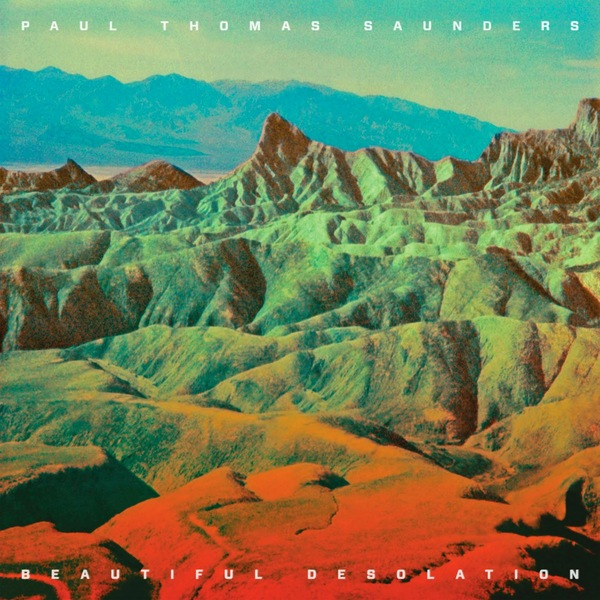 PAUL THOMAS SAUNDERS PAUL THOMAS SAUNDERS - BEAUTIFUL DESOLATION (2 LP) цена 2016