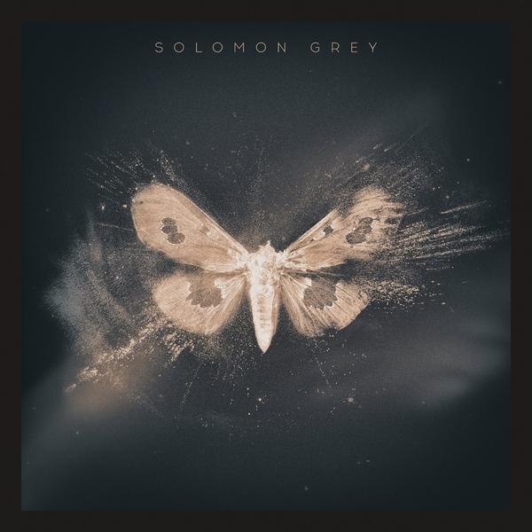 Solomon Grey Solomon Grey - Solomon Grey (2 LP) lm solomon solomon electronic practice set seaside ibm pr only