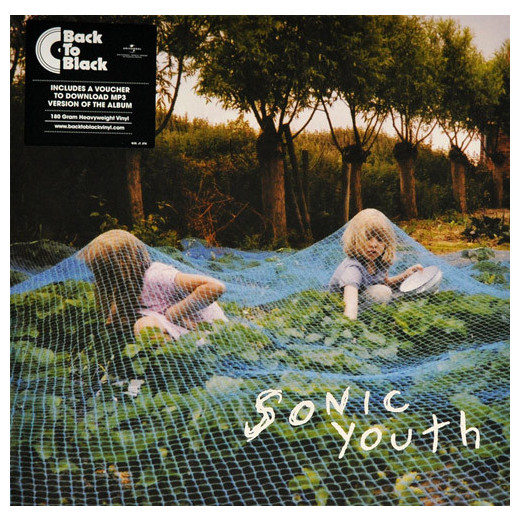 Sonic Youth Sonic Youth - Murray Street  sonic youth sonic youth sonic nurse 2 lp