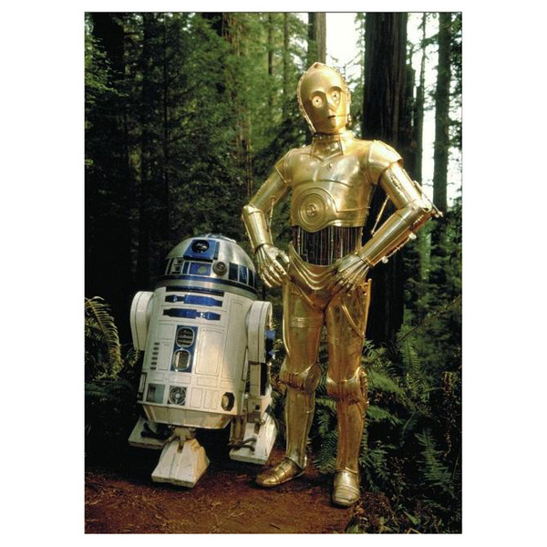 Магнит Star Wars - C-3PO   RC-D2