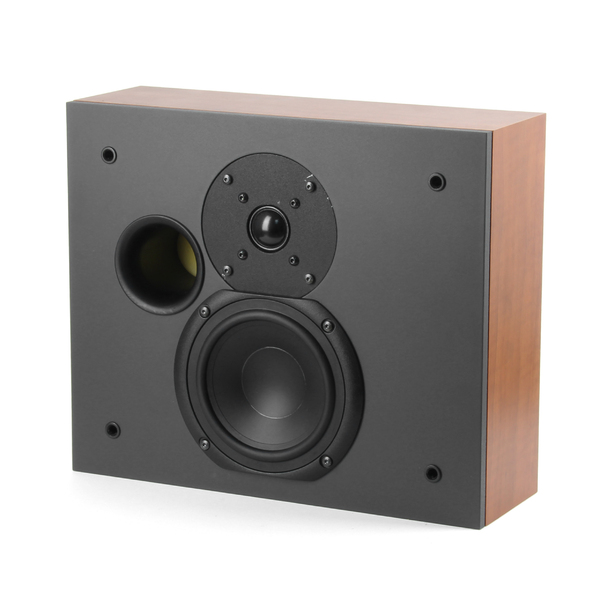 Специальная тыловая акустика System Audio