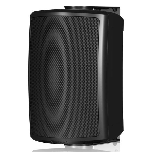 Всепогодная акустика Tannoy AMS 5ICT Black