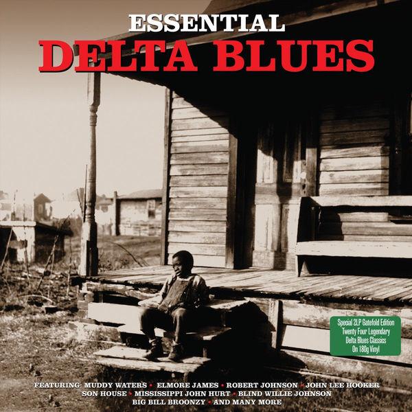 VARIOUS ARTISTS VARIOUS ARTISTS - ESSENTIAL DELTA BLUES (2 LP)Виниловая пластинка<br><br>